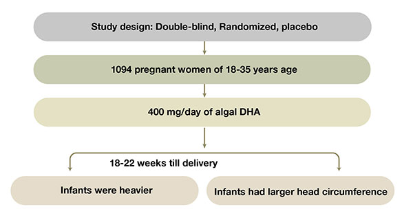 DHA increase gestational age and birth size